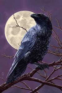 Raven and Moon Purple Sky by Lantern Press