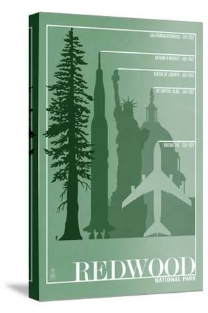 Redwood National Park - Redwood Relative Sizes