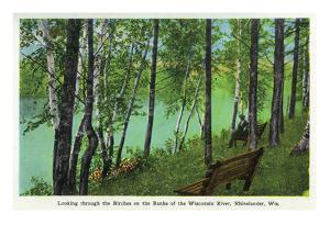Rhinelander, Wisconsin - Wisconsin River Banks Scene by Lantern Press