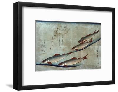 River Trout, Japanese Wood-Cut Print