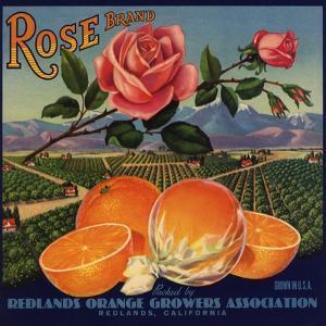 Rose Brand - Redlands, California - Citrus Crate Label by Lantern Press
