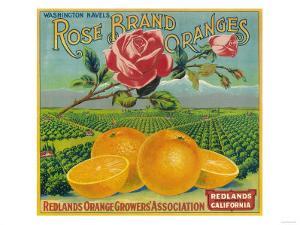 Rose Orange Label - Redlands, CA by Lantern Press