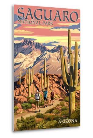 Saguaro National Park, Arizona - Hiking Scene