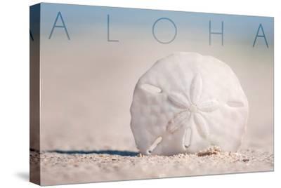 Sand Dollar on Beach - Aloha