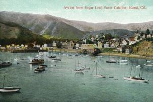 Santa Catalina Island, California - View of Avalon Bay from Sugar Loaf by Lantern Press
