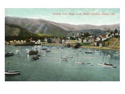 Santa Catalina Island, California - View of Avalon Bay from Sugar Loaf