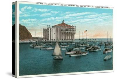 Santa Catalina Island, California - Yachts at Anchor in Avalon Bay