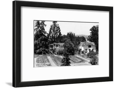 Santa Rosa, California - View of a Burbank Garden