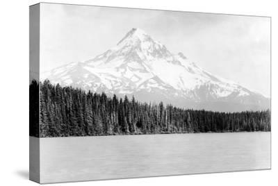 Scene of Mt. Hood from Lost Lake in Oregon Photograph - Mt. Hood, OR