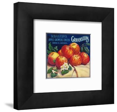 Sebastopol Gravensteins Apple Label - Sonoma, CA
