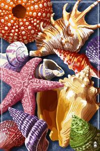 Shells Montage by Lantern Press