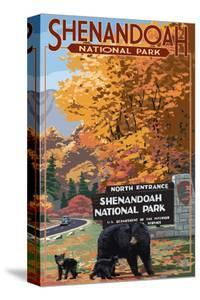 Shenandoah National Park, Virginia - Black Bear and Cubs at Entrance by Lantern Press