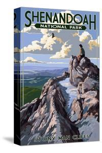 Shenandoah National Park, Virginia - Stony Man Cliffs View by Lantern Press