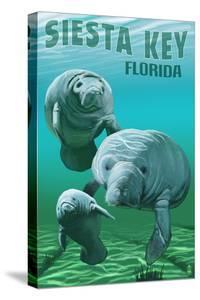 Siesta Key, Florida - Manatees by Lantern Press