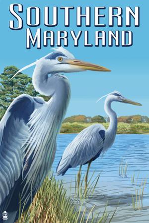 Southern Maryland - Blue Herons by Lantern Press