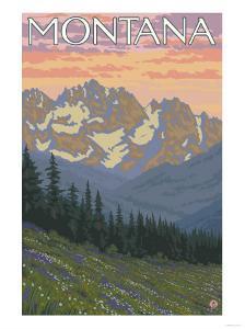 Spring Flowers, Montana by Lantern Press