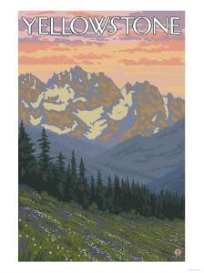 Spring Flowers, Yellowstone National Park by Lantern Press