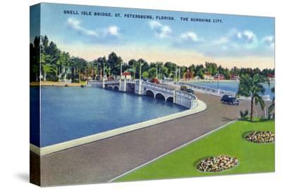 St. Petersburg, Florida - Snell Isle Bridge View
