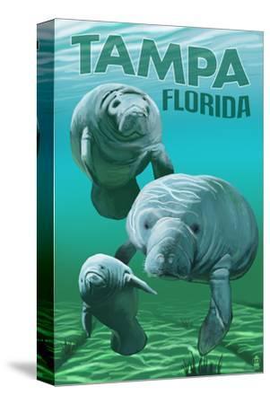 Tampa, Florida - Manatees