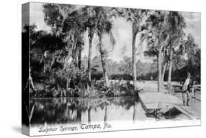 Tampa, Florida - View of Sulphur Springs by Lantern Press