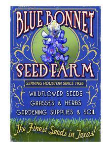 Texas Blue Bonnet Farm by Lantern Press