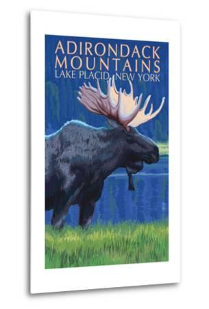 The Adirondacks - Lake Placid, New York State - Moose at Night