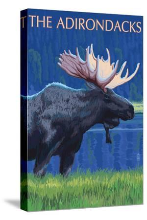 The Adirondacks - Moose at Night