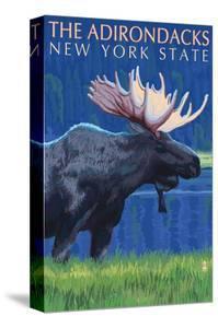 The Adirondacks, New York State - Moose at Night by Lantern Press