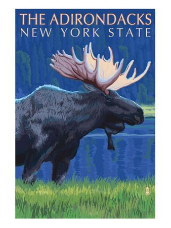 The Adirondacks, New York State - Moose at Night by Lantern Press