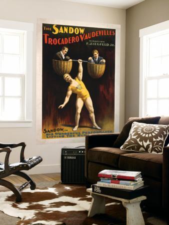 The Sandow Trocadero Vaudevilles Weightlifting Poster