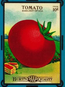 Tomato Seed Packet by Lantern Press
