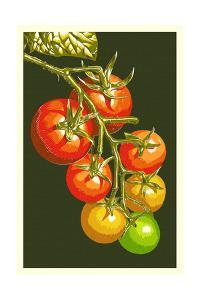 Tomatoes by Lantern Press