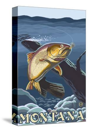 Trout Fishing Cross-Section, Montana
