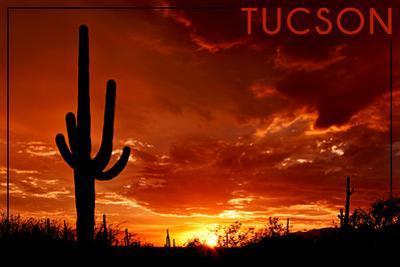Tucson, Arizona - Sunset and Cactus by Lantern Press