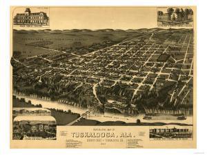 Tuscaloosa, Alabama - Panoramic Map by Lantern Press