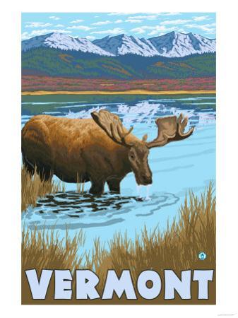 Vermont - Moose Drinking in Lake by Lantern Press