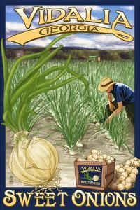 Vidalia, Georgia - Onion Field by Lantern Press