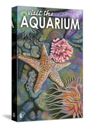 Visit the Aquarium, Tidepool Scene