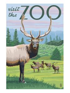 Visit the Zoo, Elk and Herd by Lantern Press