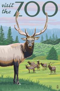Visit the Zoo, Elk and Herd by Lantern Press