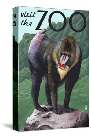 Visit the Zoo, Mandrill Scene