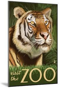 Visit the Zoo, Sumatran Tiger Scene by Lantern Press