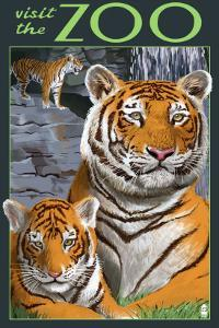 Visit the Zoo - Tiger Family by Lantern Press