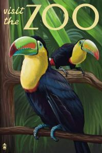 Visit the Zoo, Tucan Scene by Lantern Press