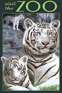 Visit the Zoo - White Tiger Family by Lantern Press