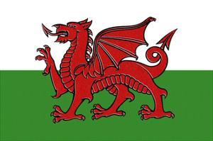 Wales Country Flag - Letterpress by Lantern Press