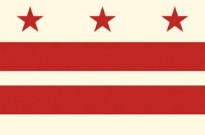Washington DC Flag by Lantern Press