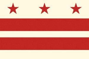 Washington DC Flag by Lantern Press
