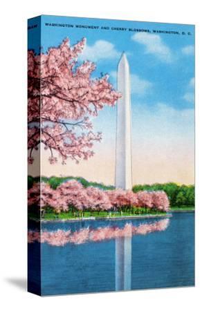 Washington DC, View of the Washington Monument through Blossoming Cherry Trees