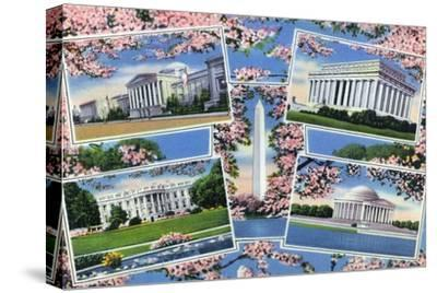 Washington, DC, Views Memorials, Monuments, White House and Blossoming Cherry Trees
